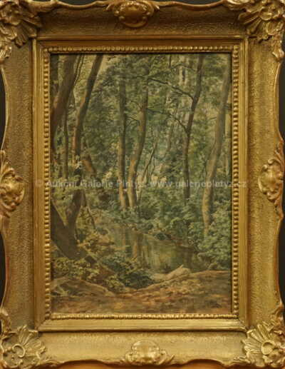 Lesní interiér