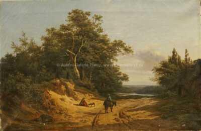 Édouard  Wadin - Cesta k jezeru
