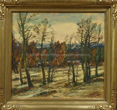 Karel Holec - Tání v pralese