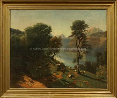 Autor neurčen - Alpská krajina