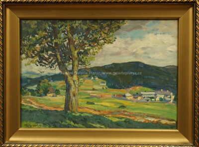 Ota Bubeníček - Pohled do údolí