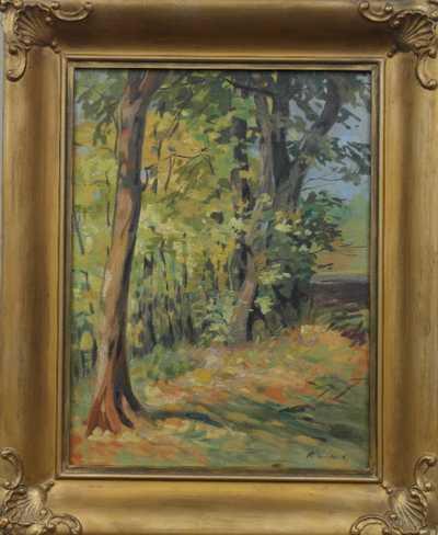 Rudolf Sokol - Na kraji lesa