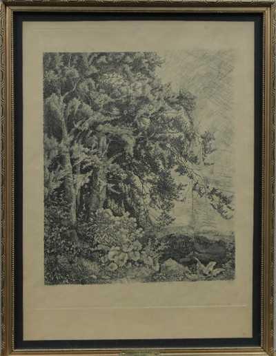 Julius Mařák - Okraj pralesa