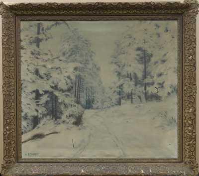 Karel Schadt - Zasněžený les