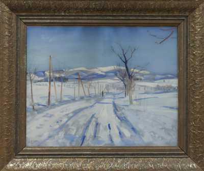 Jaroslav Grus - Zasněžená vesnice