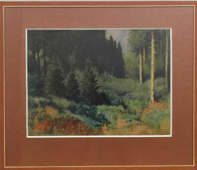 František Xaver  Harlas - Pohled do lesa