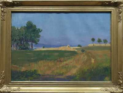 Jaromír Kunc - V polích