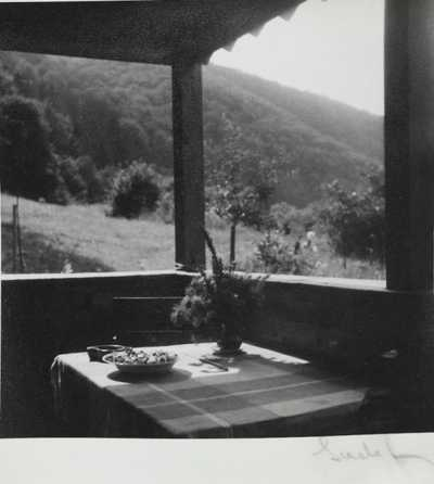 Josef Sudek - Pohled z altánku