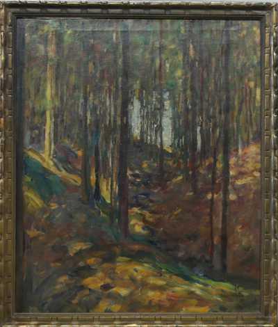 Alois Wierer - Slunce v lese