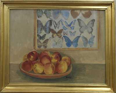 Lev Šimák - Sbírka motýlů