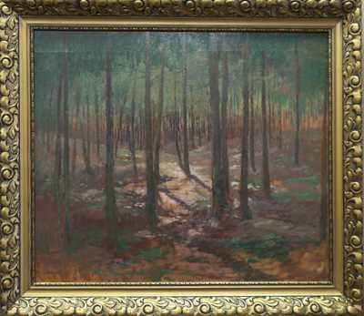 Josef Soukup - Slunce v lese