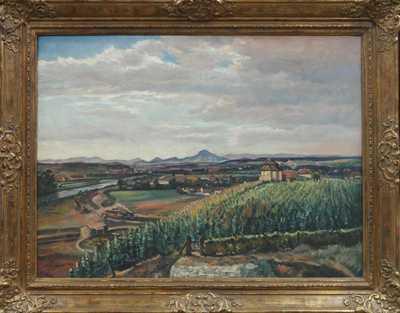 František X. Procházka - Mělnické vinice