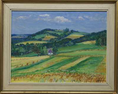 František Škrabánek - Chaloupka v polích