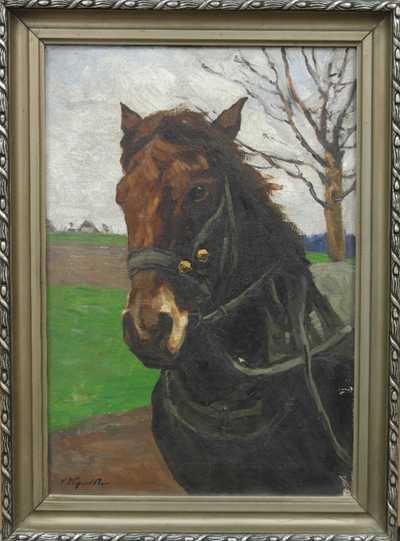 Vojtěch Hynek Popelka - Hlava koně