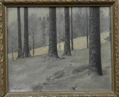 Josef Soukup - Zimní les