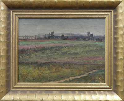 Autor neurčen - V polích