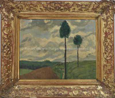 Gustav Macoun - Osamělé stromy