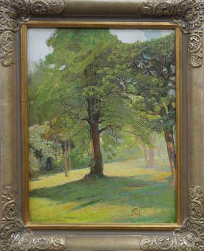Prof. Hans Hocke - Starý strom