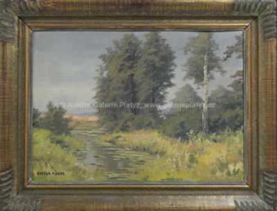 Otakar Hůrka - Lekníny na rybníce