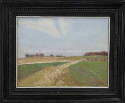 Karel Schadt - Zarostlá cesta v polích