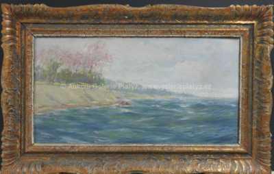 Autor neurčen - Rozkvetlé pobřeží