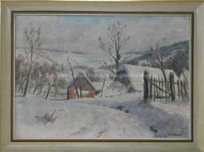 Jaromír Kunc - Zima na Vysočině