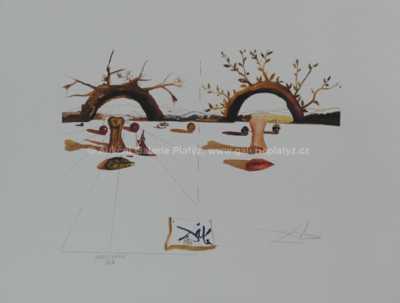 Salvador Dalí - Bez názvu