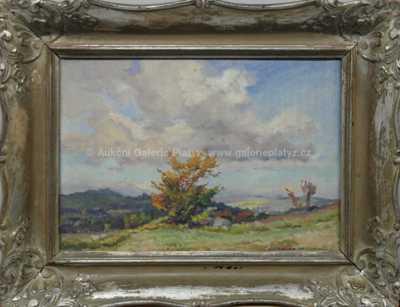 František Cína - Jelínek - Podzimní keř