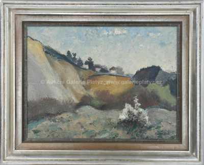 Karel Holan - Rozkvetlý keř v lomu