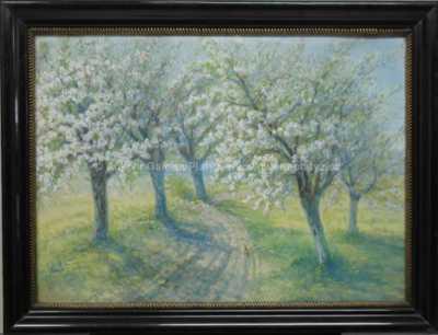 Bohumil Jaroš - Rozkvetlé stromy
