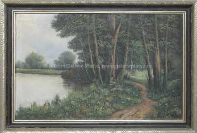 Autor neurčen - Lesní cesta