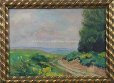 Rudolf  Walter - Polní cesta