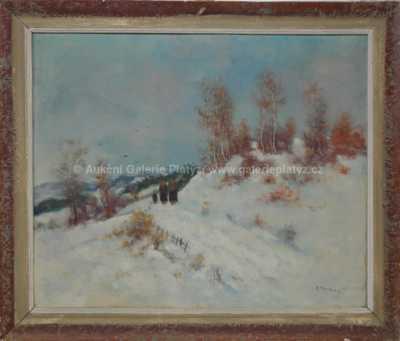 Antonín Boubín - Cesta sněhem
