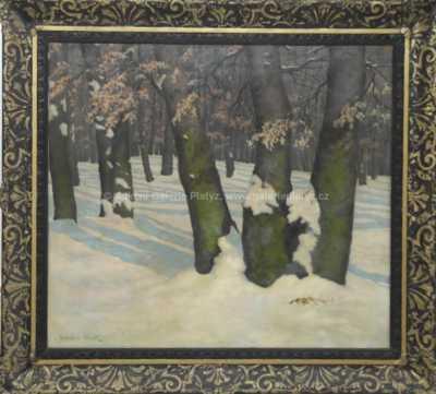 Rudolf Vojtěch Špillar - Slunce v lese
