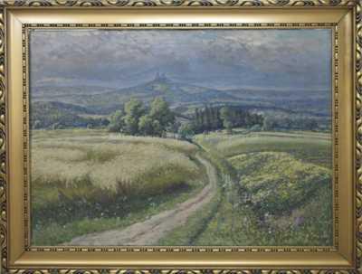 Karel Havlata - Pohled  na Trosky