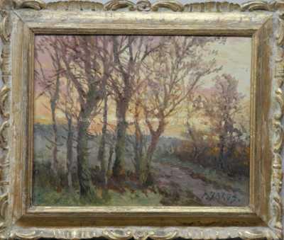 Petr Jaroš - Slunce mezi stromy