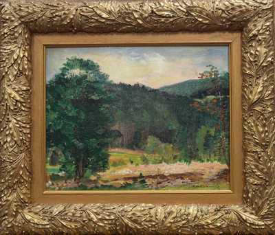 Karel Jan Sigmund - Pod lesem