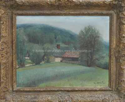Alois Kohout - Krajina