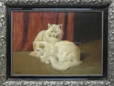 Arthur Heyer - Kočky