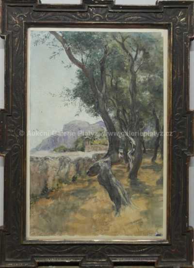 Autor neurčen - Stromořadí