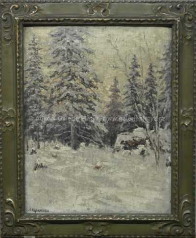 Autor neurčen - Zimní les