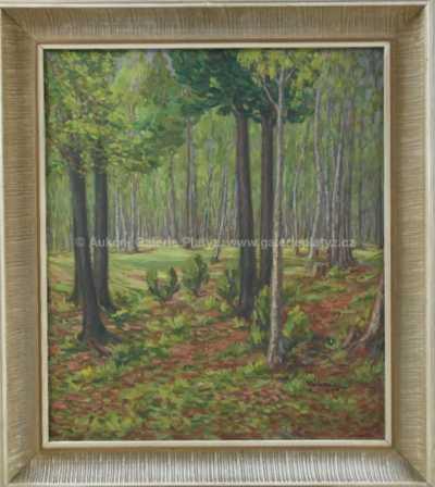 V. Valenta - Průhled lesem