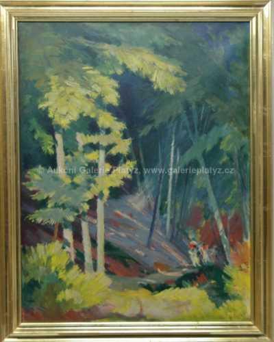 Karel Jílek - Prosluněný les