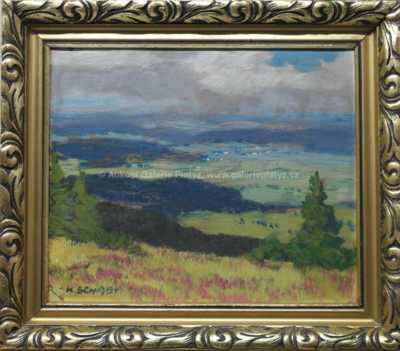Karel Schadt - Pohled do krajiny
