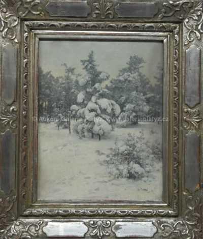 František Slabý - Těžský sníh