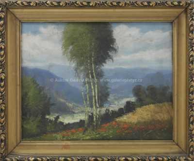 Antonín  Augusta - Pohled do údolí