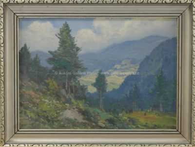 Jaroslav Trinkmoc - Hluboké lesy