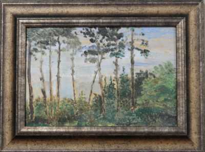 František Kaván - Vysoké stromy