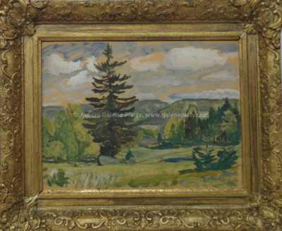 Antonín Hudeček - Strom samotář