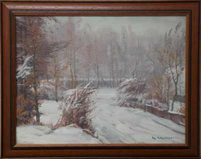Alois Kalvoda - Zimní cesta